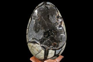 "7.3"" Septarian ""Dragon Egg"" Geode - Black Crystals For Sale, #67778"