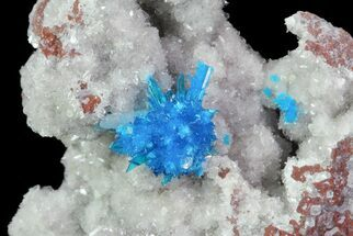 Cavansite on Stilbite - Fossils For Sale - #67803