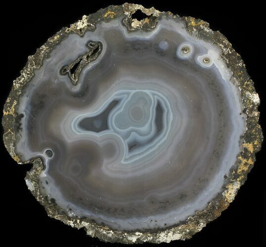"8.6"" Polished Brazilian Agate Slice"
