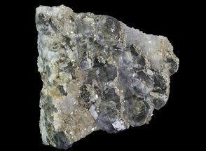 Fluorite - Fossils For Sale - #31548