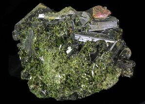 Epidote - Fossils For Sale - #68238