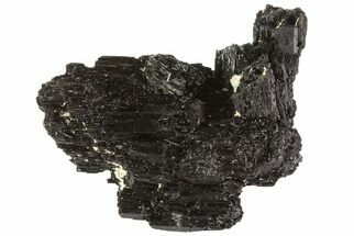 "1.7"" Black Tourmaline (Schorl) Crystal Cluster - Namibia For Sale, #69173"