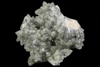 "Buy 4"" Calcite Crystal Cluster with Pyrite - Morocco - #69532"