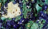 "2.3"" Sparkling Azurite Crystal Cluster with Malachite - Laos - #69714-2"