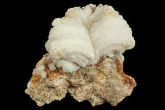 Gypsum var. Selenite - Fossils For Sale - #69903