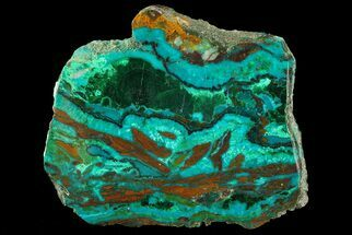 Chrysocolla & Malachite - Fossils For Sale - #69519