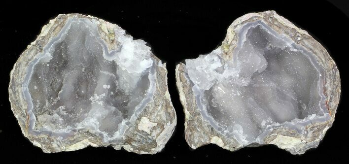 "3.3"" Crystal Filled Dugway Geode - Sparkly Quartz"