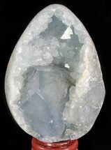"Buy 3.35"" Crystal Filled Celestite ""Egg"" - Madagascar - #66109"