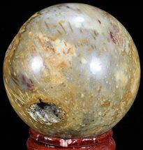 "1.7"" Polished, Petrified Wood (Palm) Sphere - Indonesia For Sale, #71555"