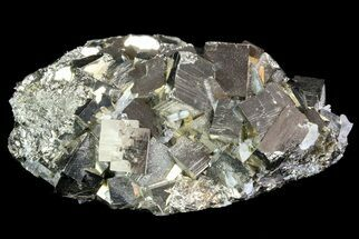 "2.6"" Gleaming, Cubic Pyrite Cluster - Peru For Sale, #71363"