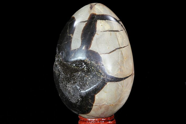"3.5"" Septarian ""Dragon Egg"" Geode - Black Crystals"