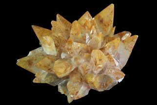 Calcite - Fossils For Sale - #72018