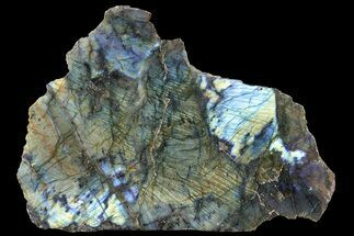 Labradorite - Fossils For Sale - #72576