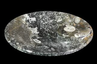 "4.2"" Round Fossil Goniatite Dish For Sale, #73721"
