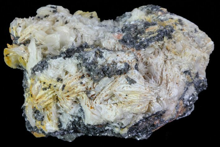 "2.5"" Cerussite Crystals with Bladed Barite on Galena- Morocco"