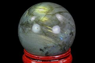 "1.3"" Flashy Labradorite Sphere - Great Color Play For Sale, #74624"