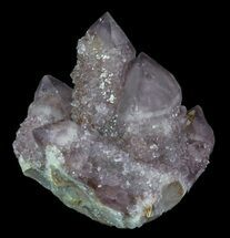 Quartz var Amethyst - Fossils For Sale - #64215