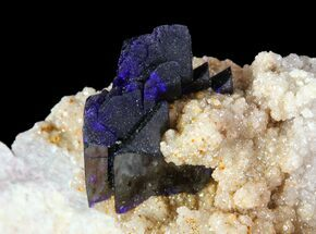 Large Azurite Crystal on Druzy Quartz - Morocco For Sale, #74684