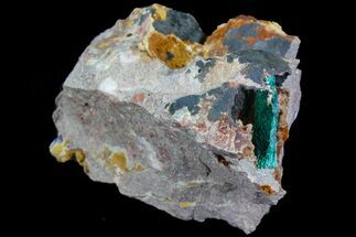 Malachite & Quartz - Fossils For Sale - #74691