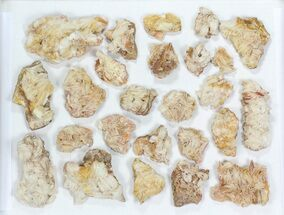 Wholesale Lot: Pink Blade Barite With Vanadinite - 25 Pieces For Sale, #77150