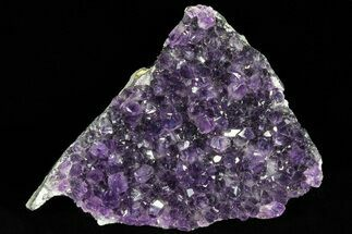 "4"" Dark Purple Amethyst Cluster - Uruguay For Sale, #77003"