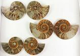 "Wholesale: 4 - 5"" Cut Ammonite Pairs (Grade B) - 10 Pairs - #77338-2"
