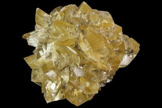 Gypsum var. Selenite - Fossils For Sale - #77604