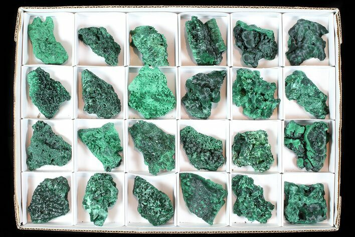 Wholesale Lot: Gorgeous Fibrous Malachite From Congo - 24 Pieces