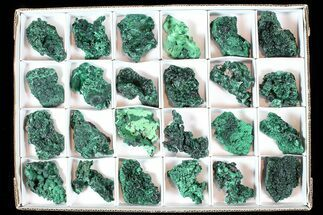 Malachite  - Fossils For Sale - #77805