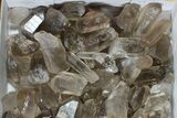 "Wholesale Lot: 18 Lbs Smoky Quartz Crystals (2-4"") - Brazil - #77823-1"