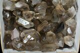 "Wholesale Lot: 23 Lbs Smoky Quartz Crystals (2-4"") - Brazil - #77825-2"
