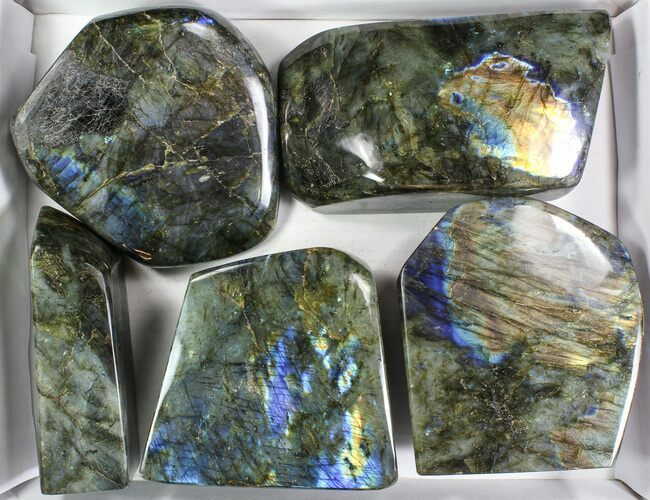 Wholesale Lot: 30 Lbs Free-Standing Polished Labradorite - 5 Pieces