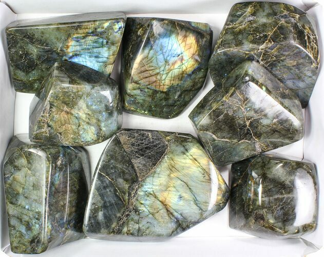 Wholesale Lot: 30 Lbs Free-Standing Polished Labradorite - 8 Pieces