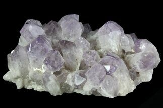 "Stunning, 9"" Wide Amethyst Crystal Cluster - Large Points For Sale, #78152"