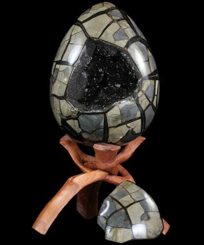 "9.8"" Septarian ""Dragon Egg"" Geode - Removable Section"