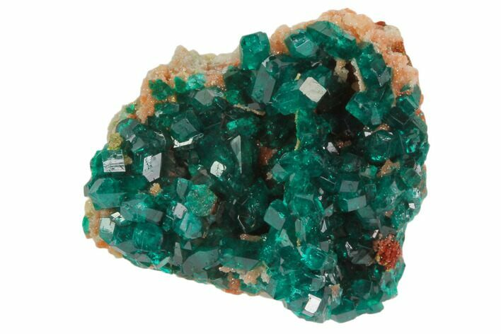 ".95"" Sparkly, Gemmy Dioptase Crystal Cluster - Namibia"