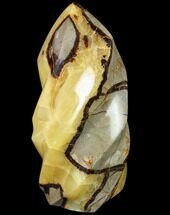 "Buy 6"" Polished Septarian Flame - #79342"