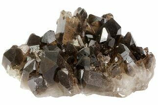 "4"" Dark Smoky Quartz Crystal Cluster - Brazil For Sale, #79931"