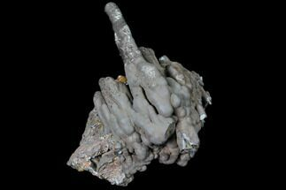 "3.7"" Coronadite ""Stalactite"" Formation - Taouz, Morocco For Sale, #80531"