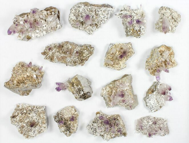 "Wholesale Lot: 2-3.5"" Veracruz Amethyst Clusters - 15 Pieces"