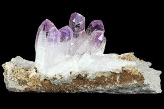Quartz var. Amethyst - Fossils For Sale - #80574