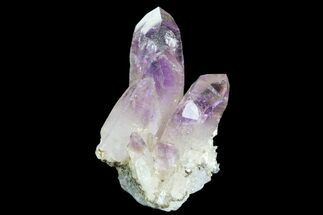 ".9"" Amethyst Cluster - Las Vigas, Mexico For Sale, #80582"