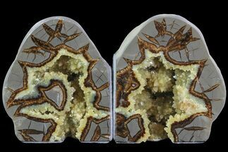"4.6"" Crystal Filled Septarian Bookends - Utah For Sale, #80522"