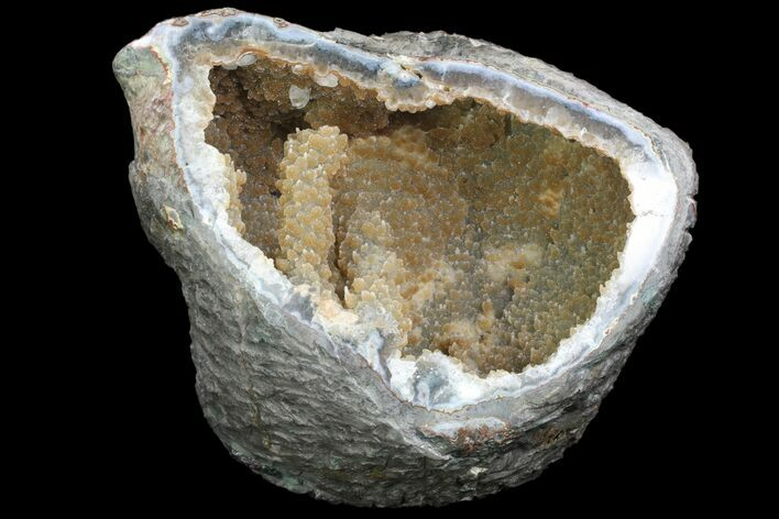 "10.7"" Wide Prasiolite (Green Quartz) Geode With ""Stalactite"" - Uruguay"