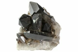 "3.4"" Dark Smoky Quartz Crystals - Brazil For Sale, #80177"