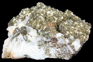 "3.1"" Pyrite On Calcite - El Hammam Mine, Morocco For Sale, #80741"