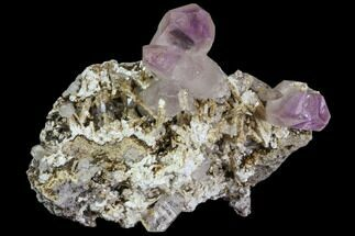 "2.1"" Amethyst Cluster - Las Vigas, Mexico For Sale, #80615"