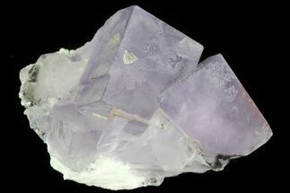 "2"" Lustrous Purple Cubic Fluorite Crystals - Morocco  For Sale, #80327"