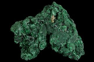 Malachite  - Fossils For Sale - #81768