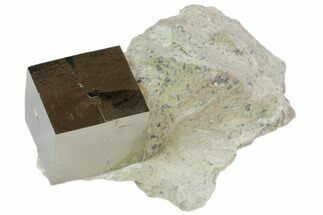 Pyrite - Fossils For Sale - #82092